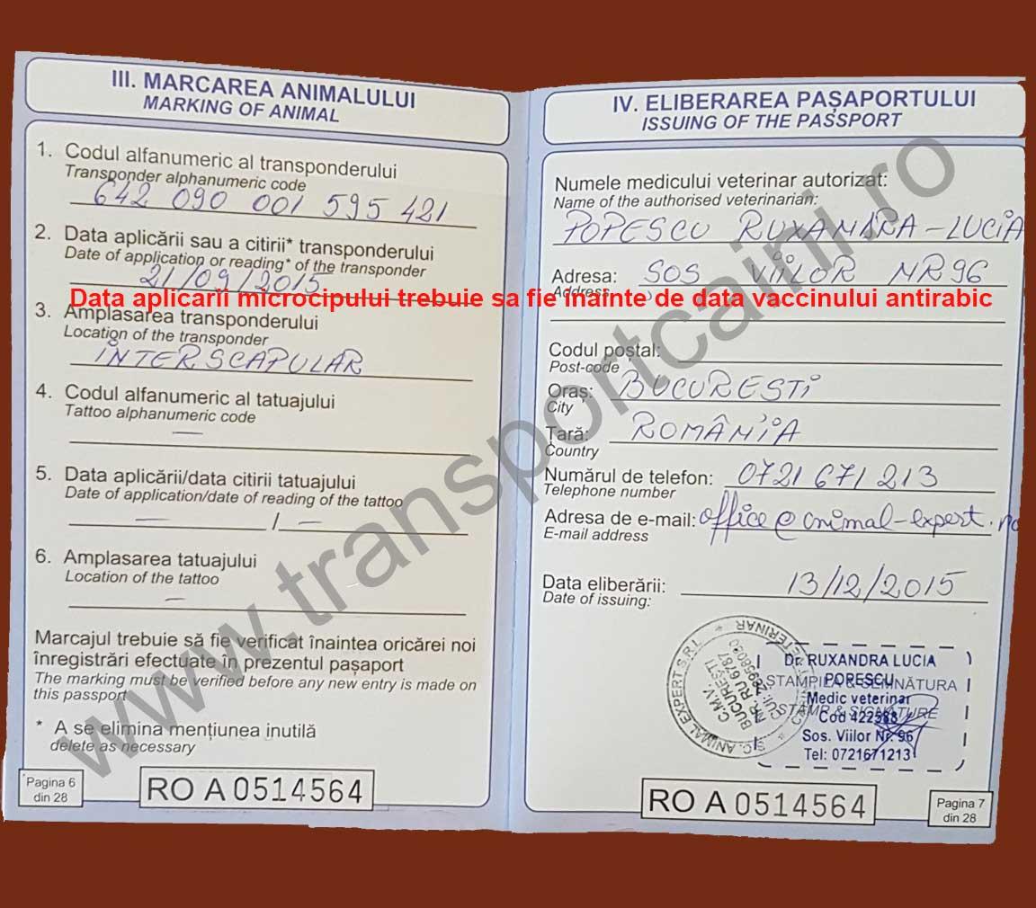 deparazitare în pașaport viermi la fiere simptome