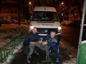 transport-catei-belgia