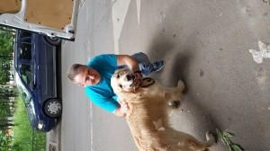 8-transport-labrador-09-iunie-2016