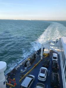 Transport caini si pisici feribot Anglia