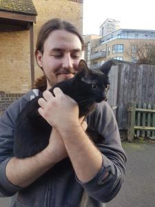 Transport pisica Anglia