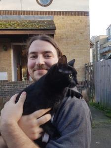 Transport pisica UK