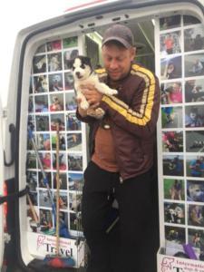 transport-caini-pisici-06-iunie-2018-047
