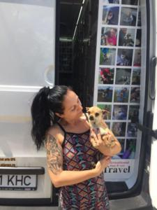 transport-caini-pisici-06-iunie-2018-057