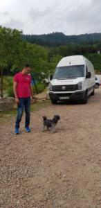 transport-caini-pisici-14-iunie-2018-006