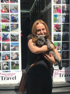 transport-caini-pisici-23-mai-2018-013