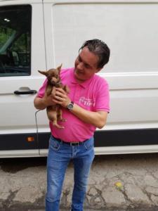 transport-caini-pisici-26-iulie-2018-006