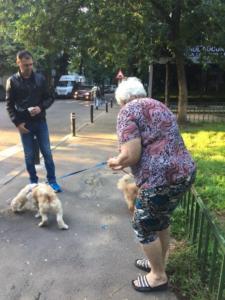 transport-caini-pisici-27-iunie-2018-021