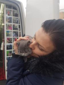 transport-caini-pisici-anglia-germania-franta-31-01-2019 (13)
