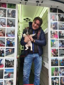 transport-caini-pisici-anglia-germania-franta-31-01-2019 (24)