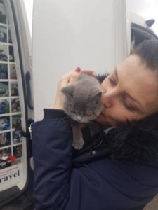 transport-caini-pisici-anglia-germania-franta-31-01-2019 (26)