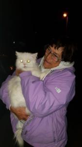transport-caini-si-pisici-marea-britanie-septembrie-2018 (17)